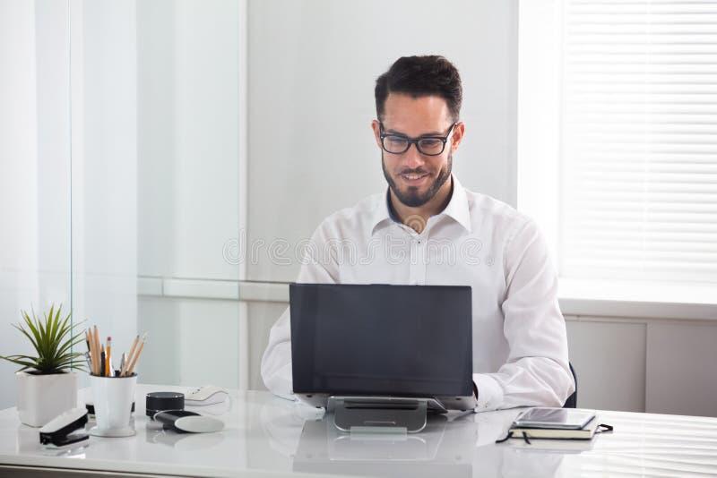 Hombre de negocios sonriente usando la computadora port?til fotografía de archivo