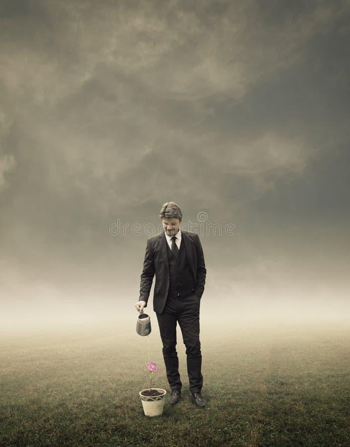 Hombre de negocios Standing y riego de una pequeña planta imágenes de archivo libres de regalías