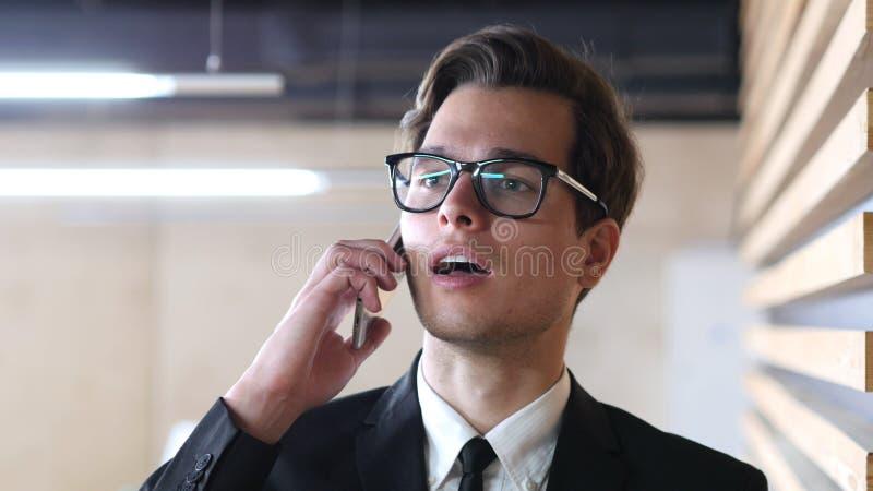 Hombre de negocios Talking en el teléfono, discutiendo proyecto, retrato foto de archivo