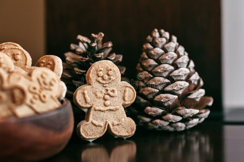 Hombre de pan de jengibre hecho en casa en conos de una tabla de madera y del pino en los días de fiesta de la Navidad imagen de archivo