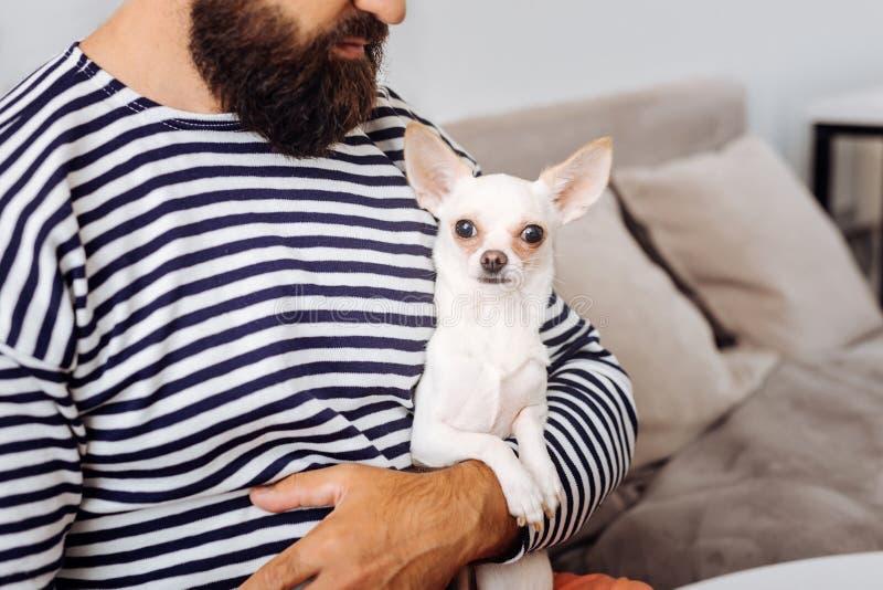 Hombre de pelo oscuro barbudo que sostiene su pequeño perro blanco imagen de archivo libre de regalías