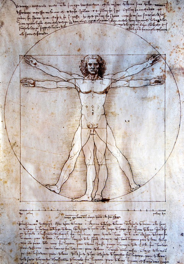 Hombre de Vitruvian - Leonardo Da Vinci fotos de archivo libres de regalías