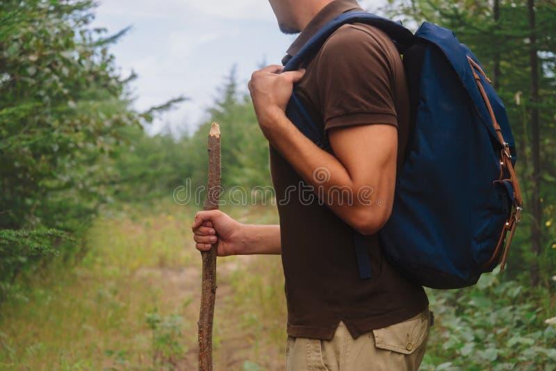 Hombre del caminante que camina con un palillo de madera en bosque imagenes de archivo