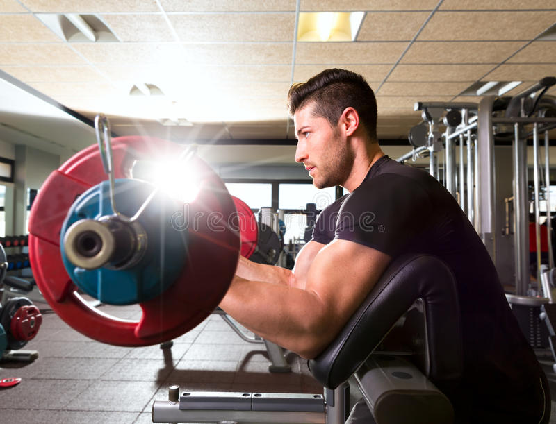 Hombre del entrenamiento del rizo del brazo del banco del predicador del bíceps en el gimnasio imágenes de archivo libres de regalías