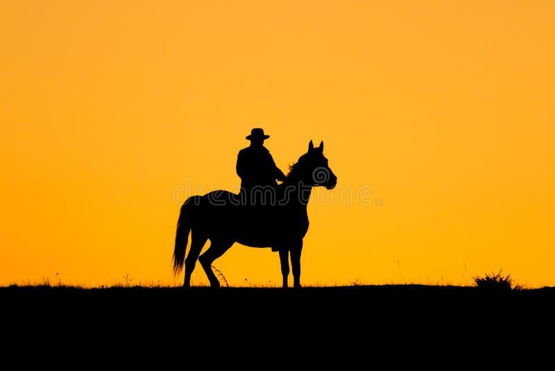 Hombre del jinete y su caballo en la puesta del sol fotos de archivo libres de regalías