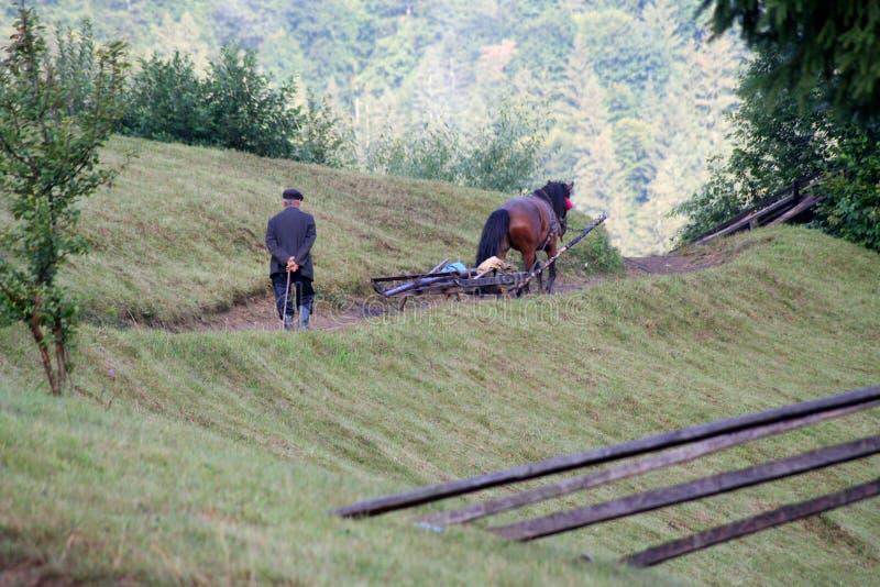 hombre del ld que sigue un carro del caballo en las monta?as imagen de archivo