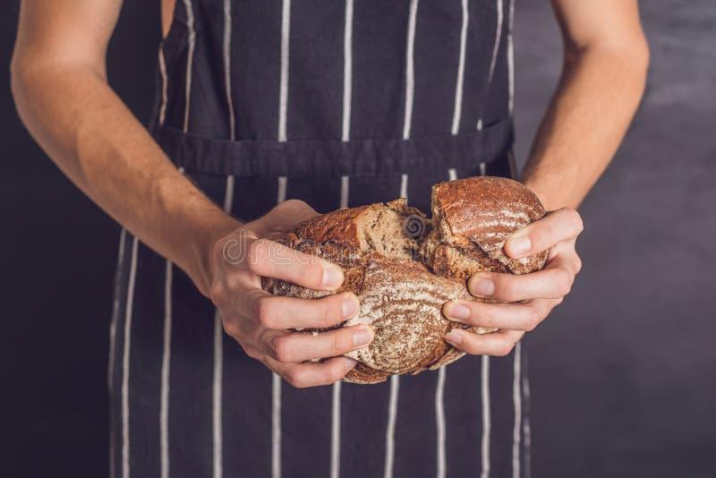 Hombre del panadero que sostiene el pan rústico hecho en casa del trigo en manos Selectiv fotos de archivo libres de regalías