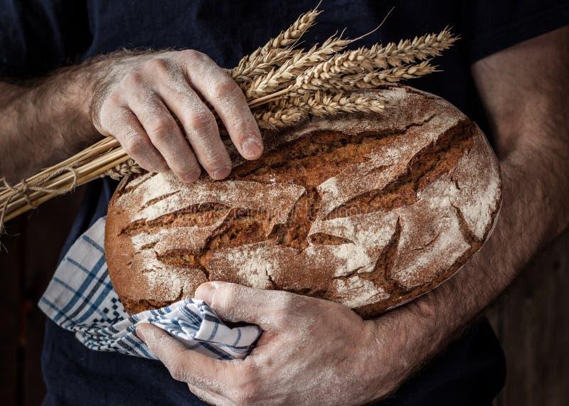 Hombre del panadero que sostiene la barra de pan y el trigo rústicos en manos imagen de archivo
