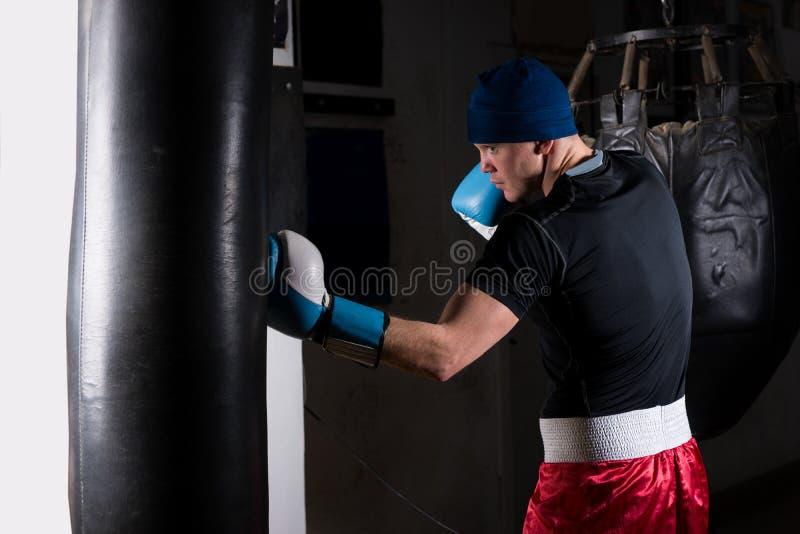 Hombre deportivo joven en guantes de boxeo que entrena con la perforación del boxeo imágenes de archivo libres de regalías