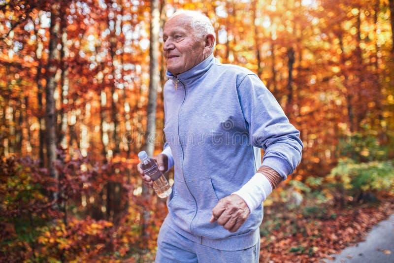 Hombre deportivo mayor que corre en bosque durante entrenamiento de la mañana imagenes de archivo