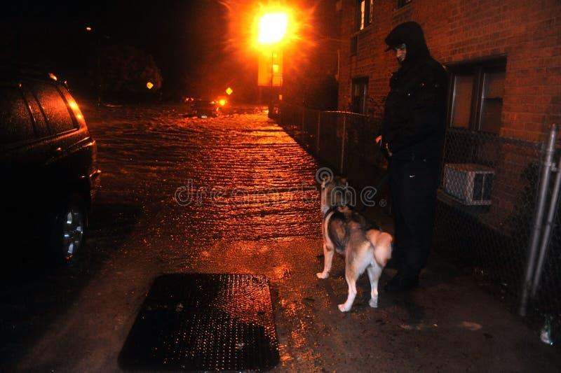 Hombre desconocido con el perro que mira la calle inundada fotografía de archivo libre de regalías