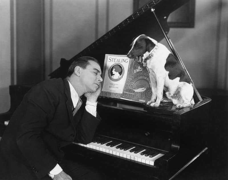 Hombre dormido en el piano con el perro (todas las personas representadas no son vivas más largo y ningún estado existe Garantías imagen de archivo