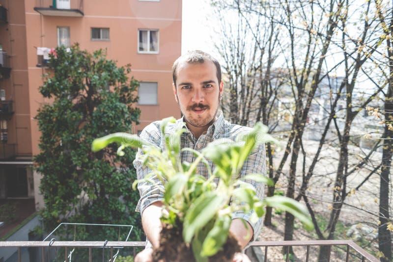 Hombre elegante hermoso que sostiene la planta de la albahaca imágenes de archivo libres de regalías