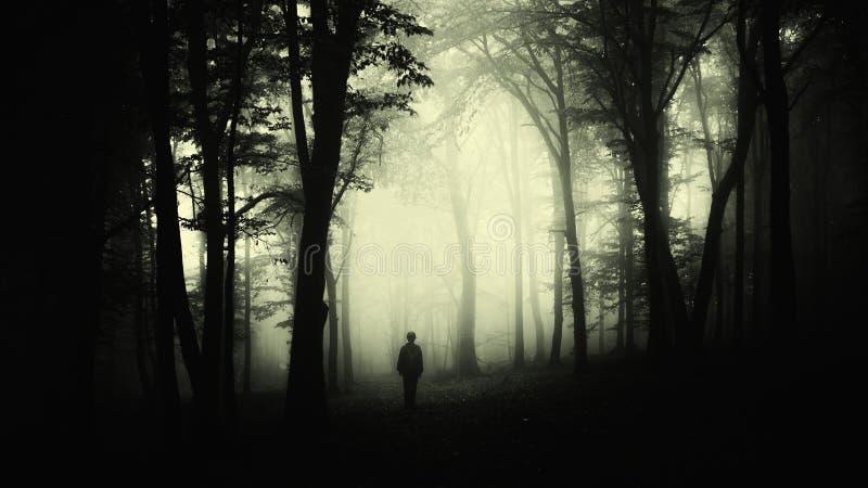 Hombre en bosque espeluznante con niebla en Halloween imagen de archivo