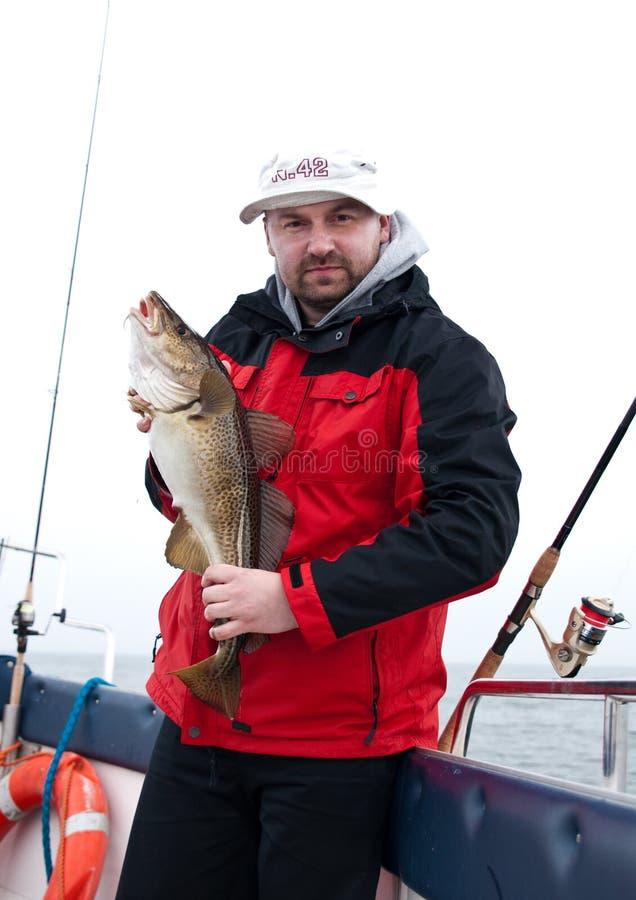Hombre en el barco con los pescados de bacalao imagen de archivo