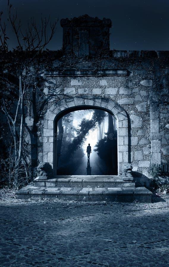 Hombre en el camino en bosque de niebla en puerta abierta foto de archivo
