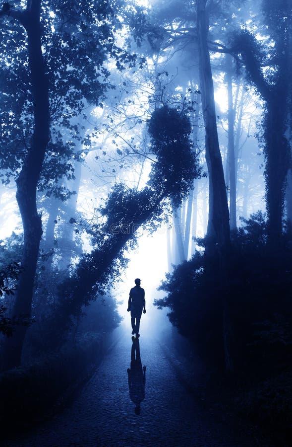 Hombre en el camino en bosque de niebla imagenes de archivo