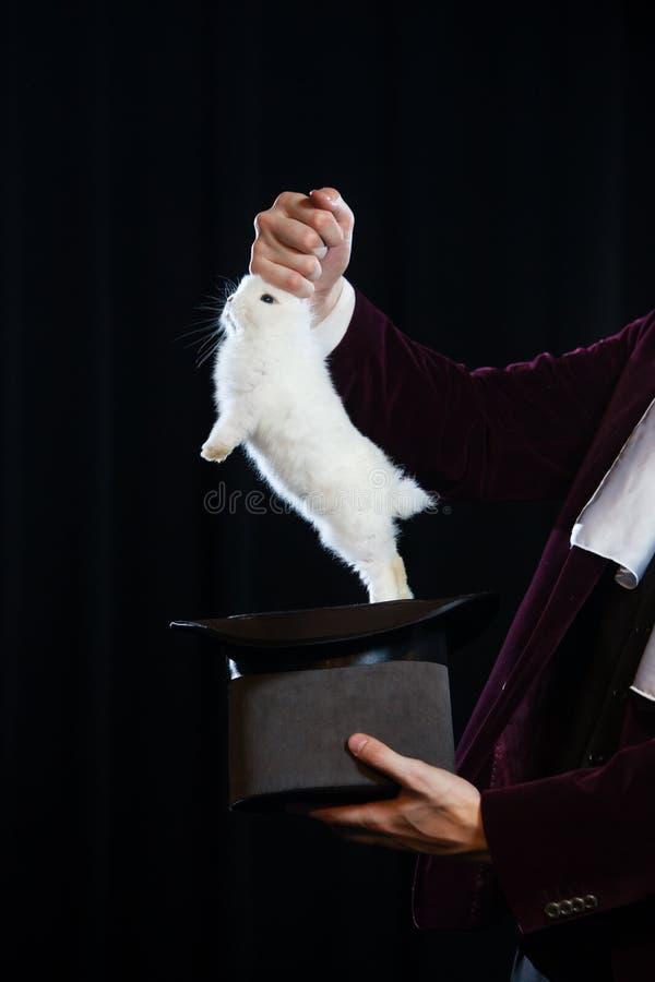 Hombre en el traje que saca de un conejo el sombrero del primero Primer fotos de archivo
