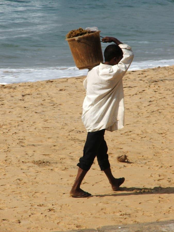 Hombre en la playa después del tsunami 2004 fotografía de archivo
