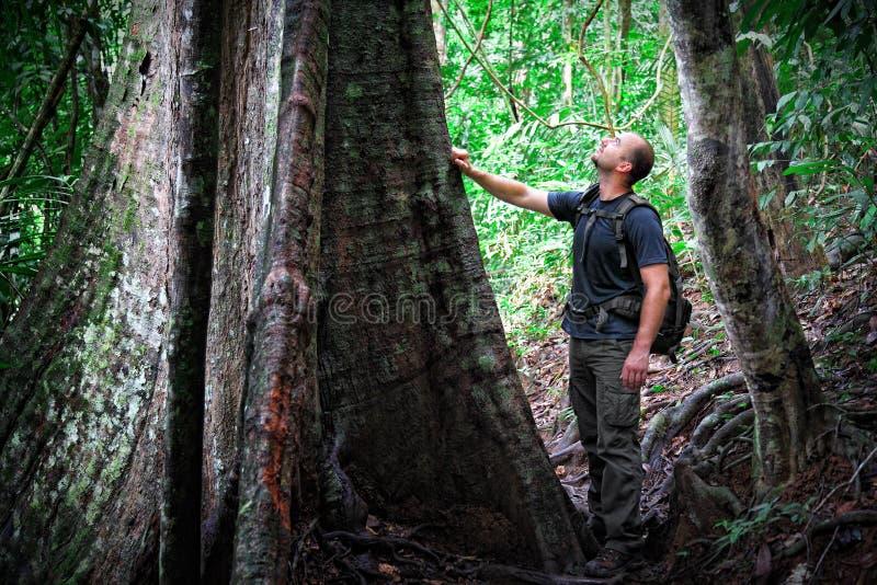Hombre en la selva de Borneo fotos de archivo