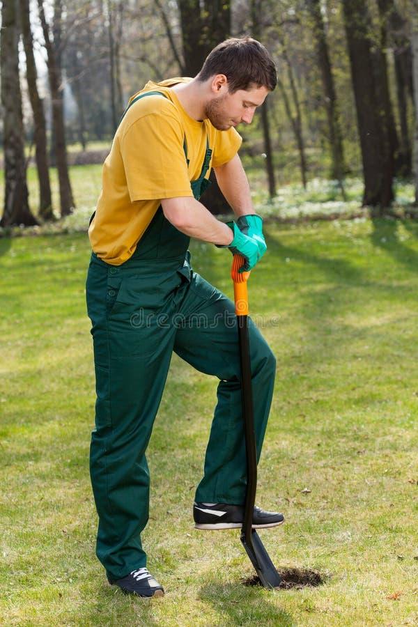 Download Hombre En Overoles Que Cava En Jardín Imagen de archivo - Imagen de cultive, gardening: 41916235