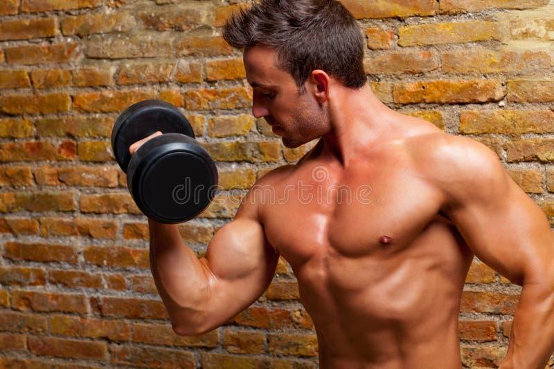 Hombre formado músculo de la carrocería con los pesos en la pared de ladrillo fotos de archivo libres de regalías