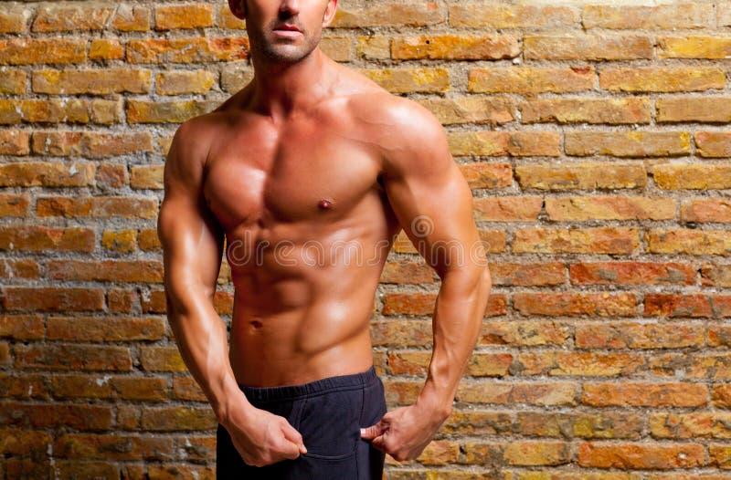 Hombre formado músculo que presenta en la pared de ladrillo de la gimnasia imagen de archivo libre de regalías