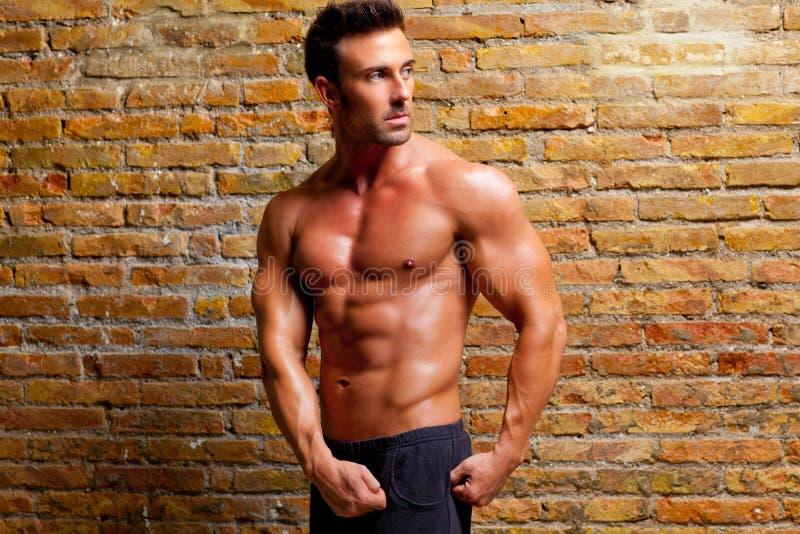 Hombre formado músculo que presenta en la pared de ladrillo de la gimnasia fotos de archivo libres de regalías