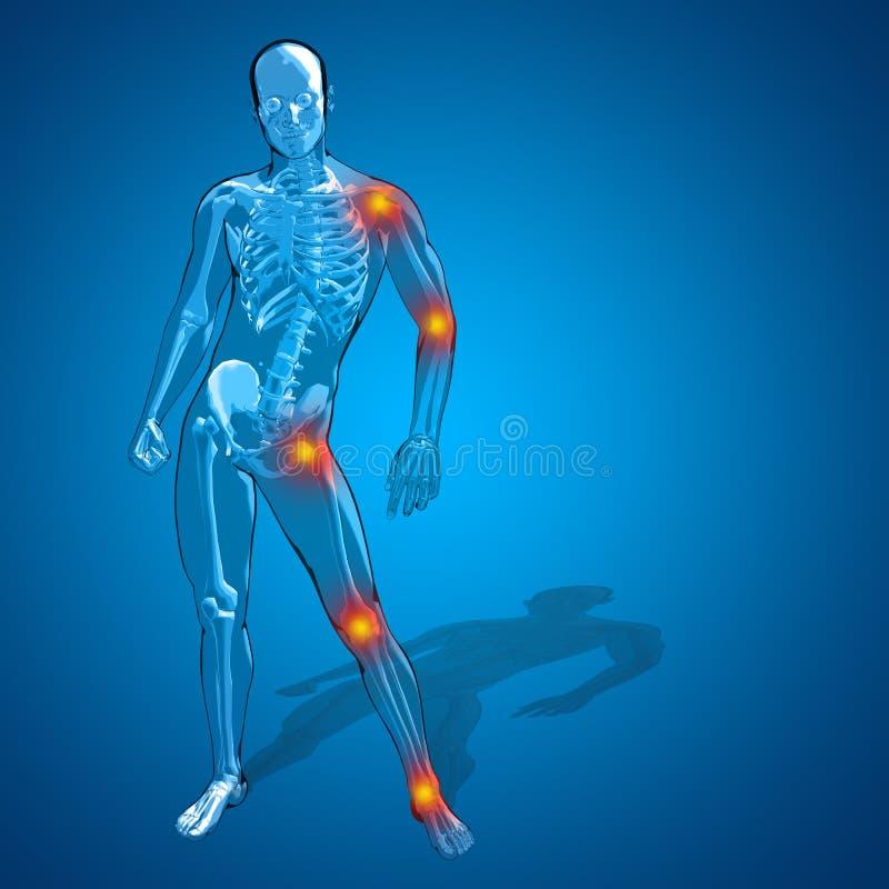 Hombre humano conceptual 3D o anatomía esquelética del dolor o del dolor del varón libre illustration