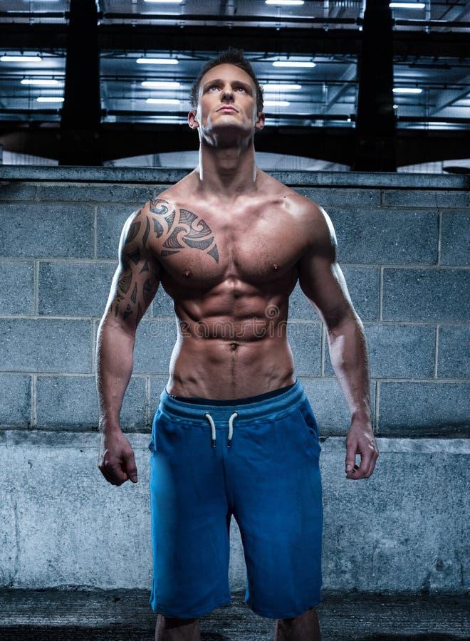 Hombre joven atlético hermoso con el tatuaje que mira para arriba foto de archivo