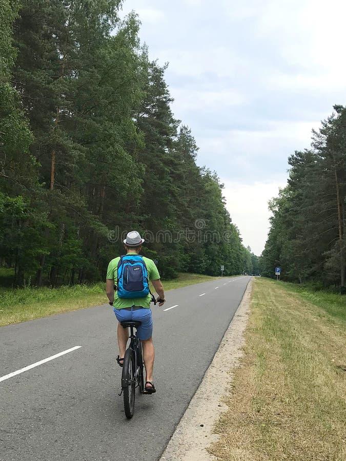 Hombre joven caucásico con la mochila que monta una bicicleta en una carretera de asfalto rodeada por la opinión trasera del bosq imágenes de archivo libres de regalías