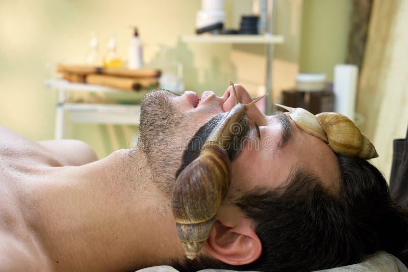 Hombre joven caucásico que recibe masaje de los caracoles imagen de archivo