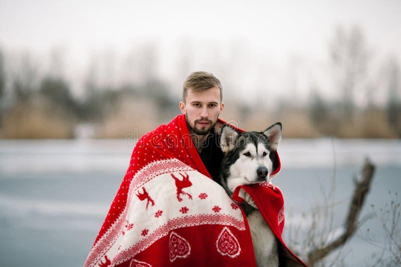 Hombre joven con el perro del malamute de Alaska envuelto en manta imágenes de archivo libres de regalías