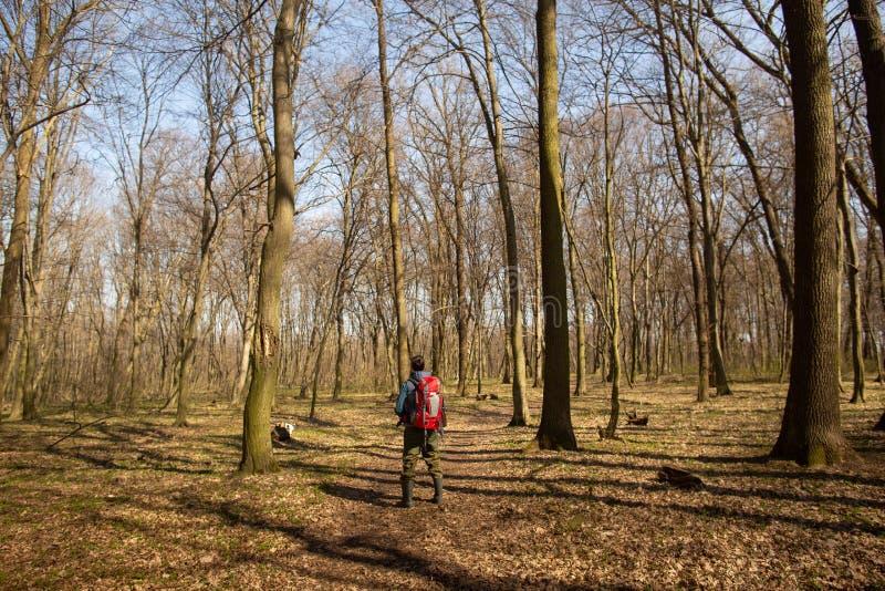 Hombre joven con la mochila que camina en la naturaleza del bosque y el concepto del ejercicio f?sico fotos de archivo libres de regalías
