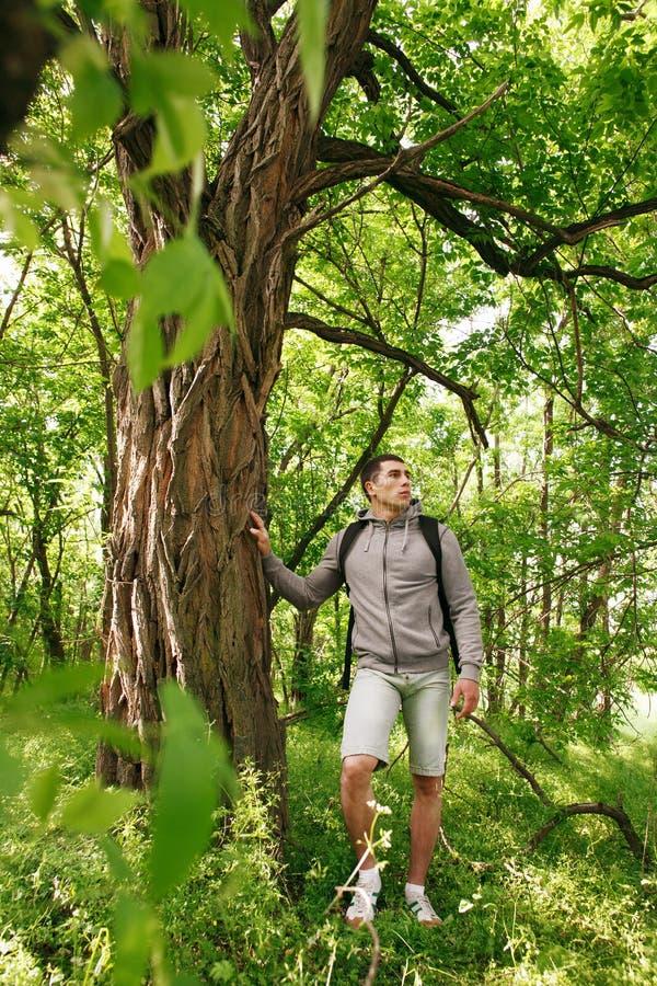 Hombre joven del caminante con la mochila que camina en el varón que viaja del bosque del verano que se coloca cerca de un árbol  fotografía de archivo libre de regalías