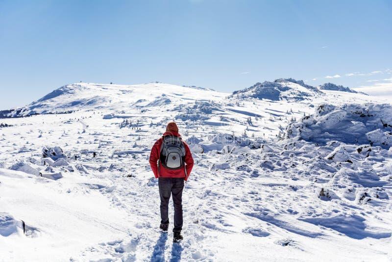 Hombre joven del caminante en la montaña del invierno foto de archivo libre de regalías
