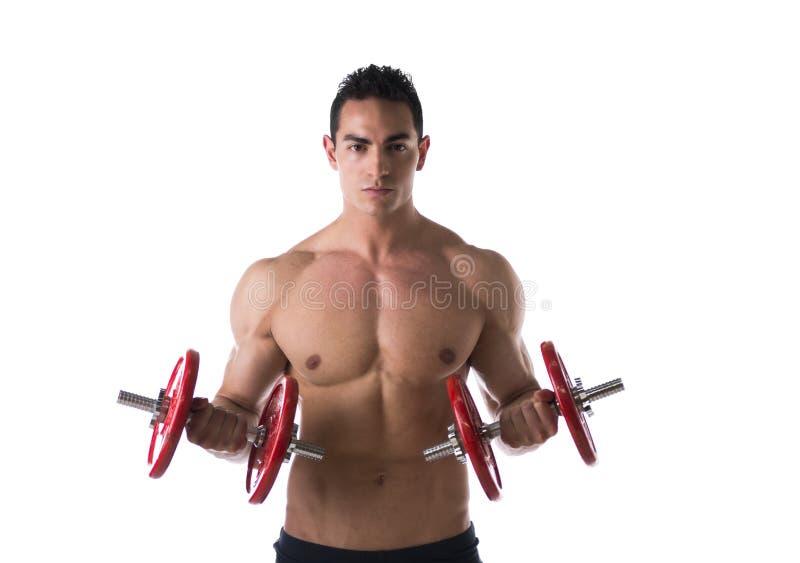 Hombre joven descamisado muscular que ejercita el bíceps con pesas de gimnasia imagenes de archivo