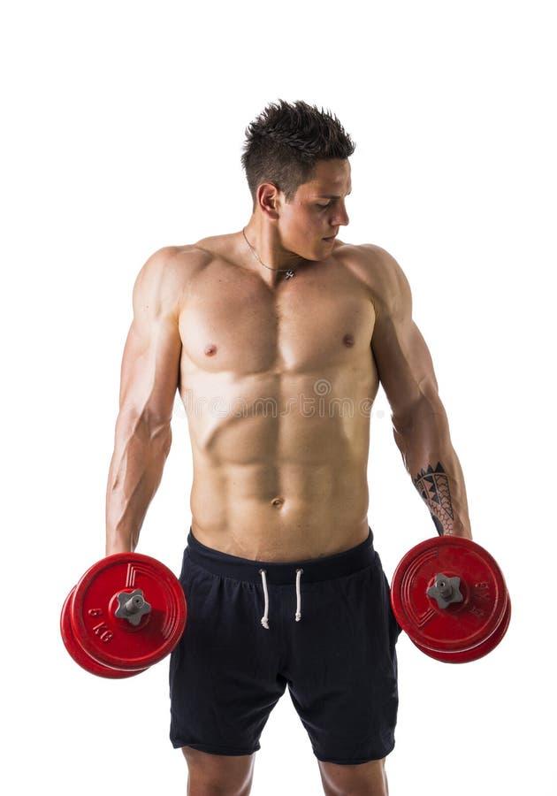 Hombre joven descamisado muscular que ejercita trampas con fotos de archivo libres de regalías