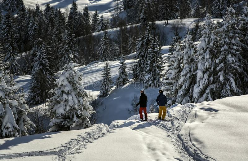 Hombre joven el vacaciones del esquí foto de archivo