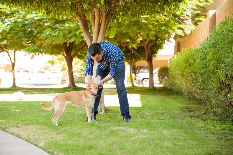 Hombre joven que camina su perro en un parque fotografía de archivo libre de regalías