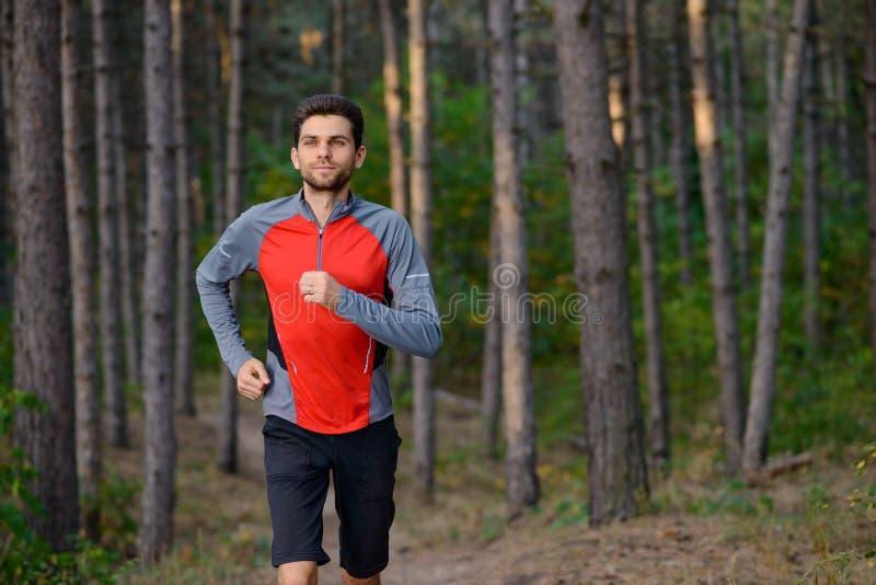 Hombre joven que corre en el rastro en el pino salvaje Forest Active Lifestyle imágenes de archivo libres de regalías