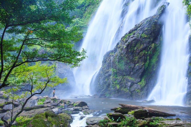 Hombre joven que se relaja en piedra delante de la cascada que fluye Natur fotos de archivo