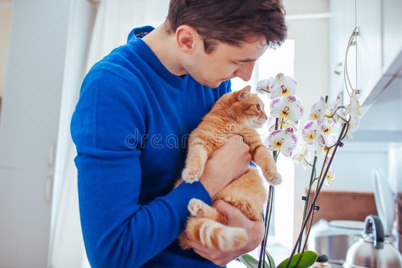 Hombre joven que sostiene un gato cerca de la orqu?dea en casa imagen de archivo