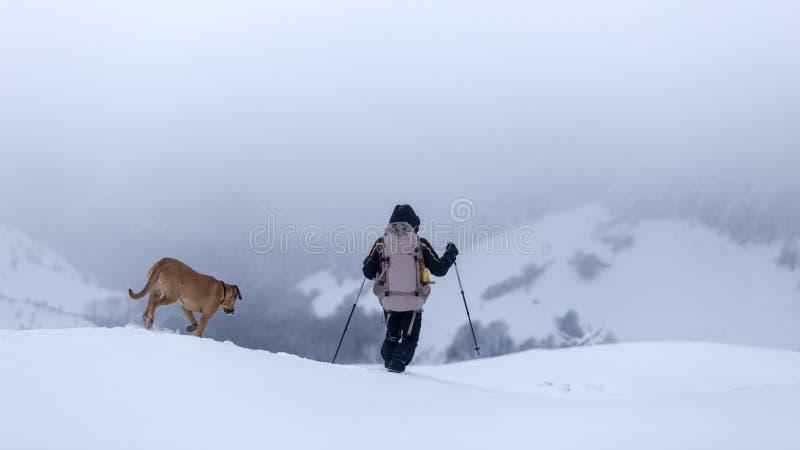 Hombre joven y su perro que caminan con condiciones de niebla en las montañas de Rumania fotos de archivo