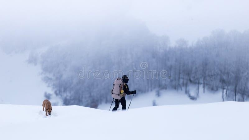Hombre joven y su perro que caminan con condiciones de niebla en las montañas de Rumania foto de archivo