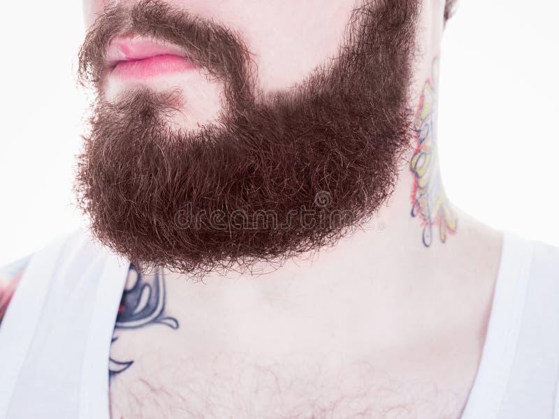 Hombre largo de la barba y del bigote imagen de archivo libre de regalías