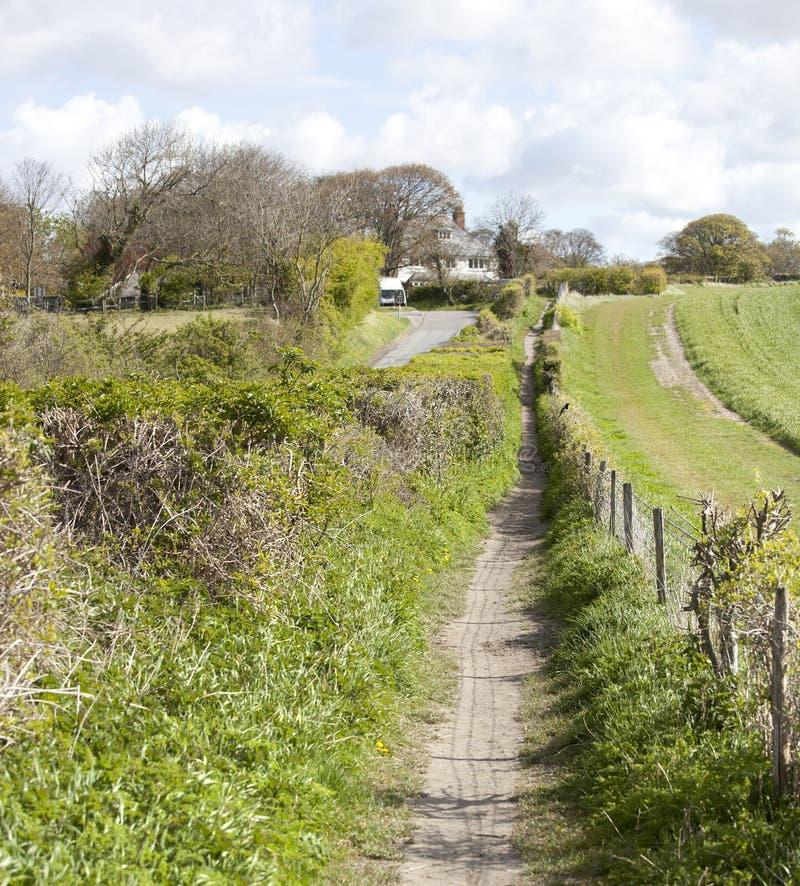 Hombre largo de Sussex de wilmington imagen de archivo libre de regalías