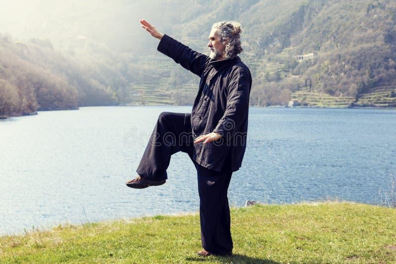 Hombre maduro que practica la disciplina de Tai Chi al aire libre foto de archivo libre de regalías