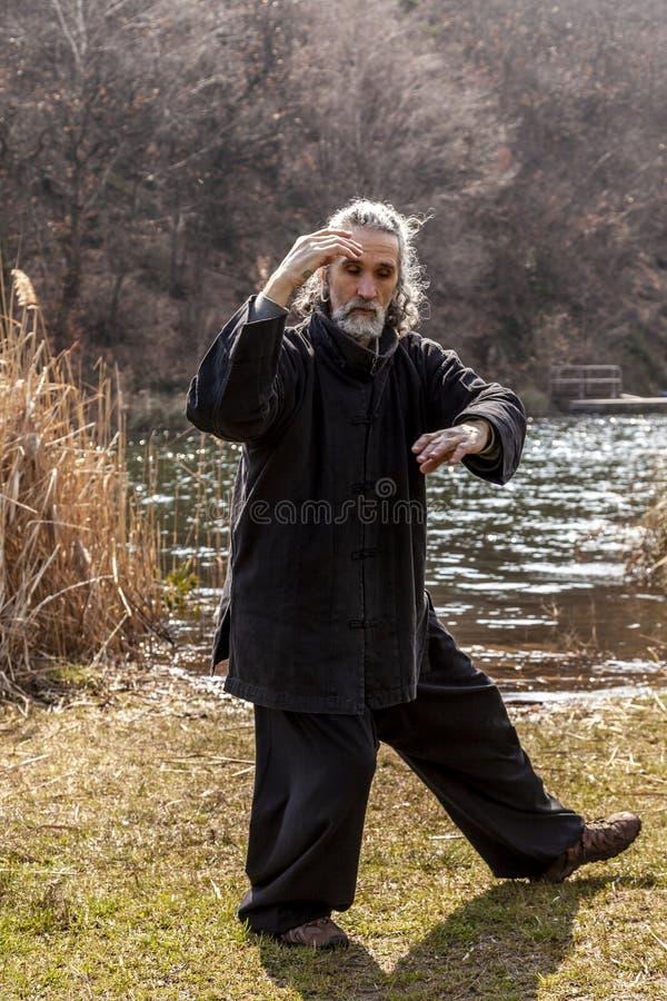 Hombre maduro que practica la disciplina de Tai Chi al aire libre imagenes de archivo