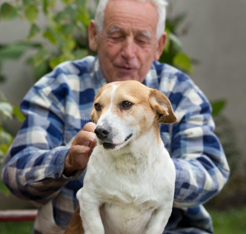 Hombre mayor con el perro en patio imagen de archivo libre de regalías
